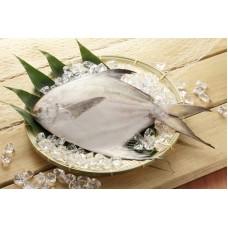 白鯧(550-600g/尾)