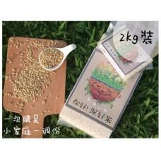 [你好!]泥好米(2kg裝),此為預購商品